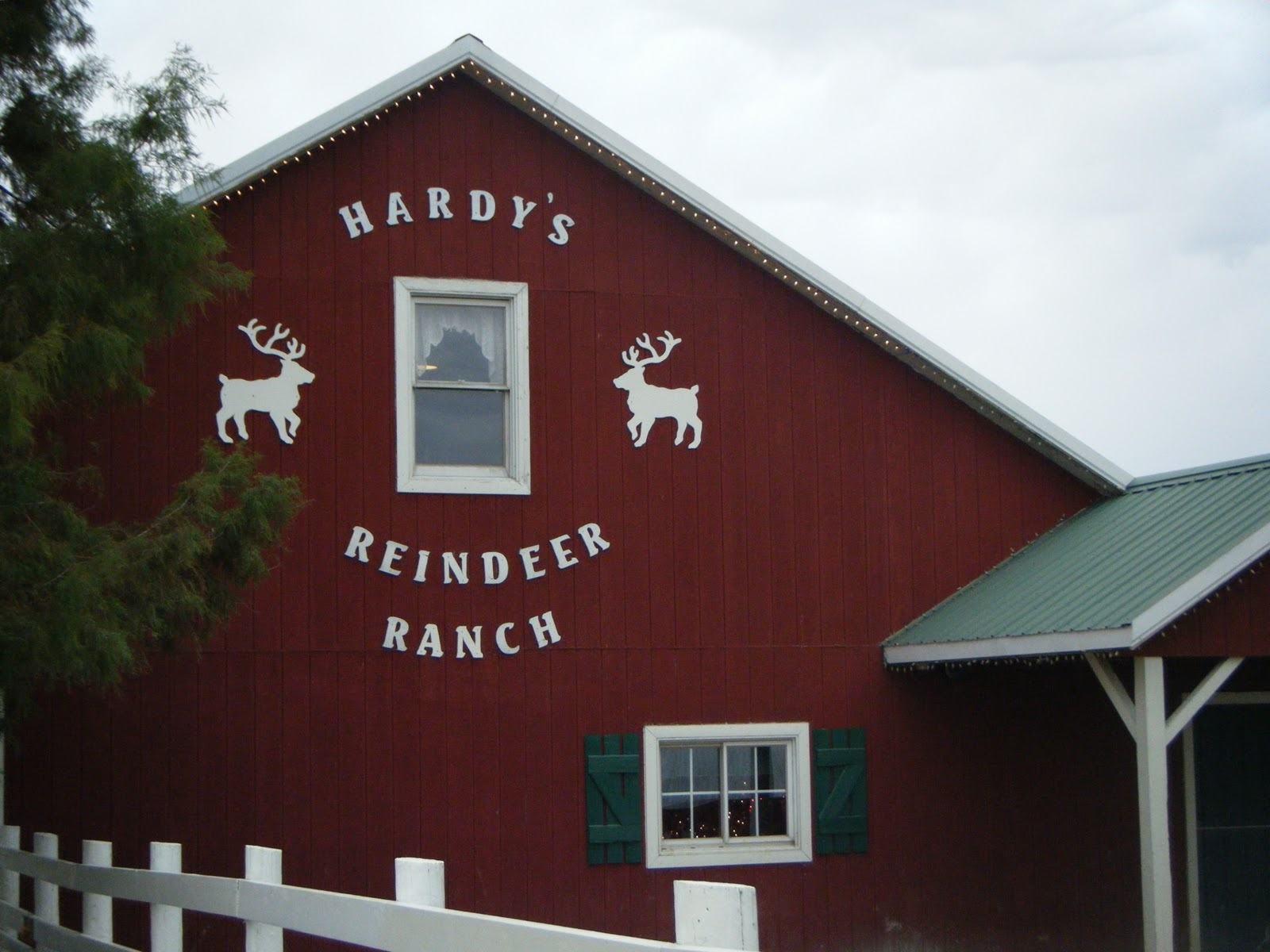 Hardy's Reindeer Ranch - Rantoul, IL